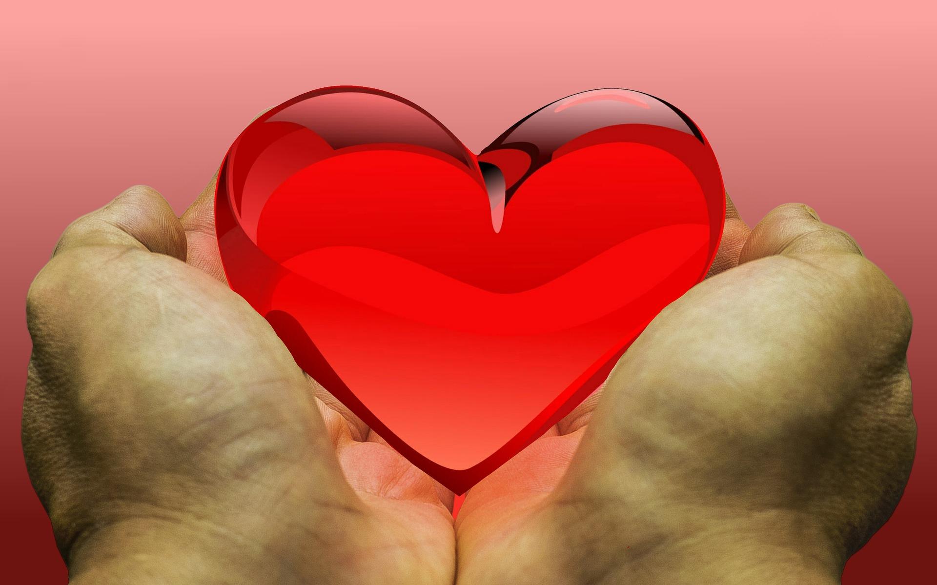 Social Media Helps Remedy Organ Donation Crisis